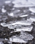 Frozen6